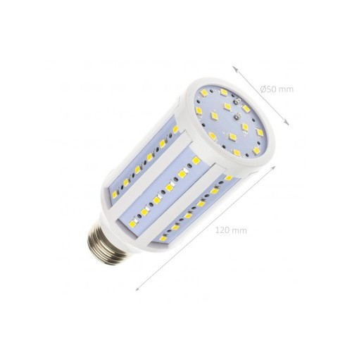 Lampe LED eclairage Public E27 10W