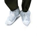 sur chaussure